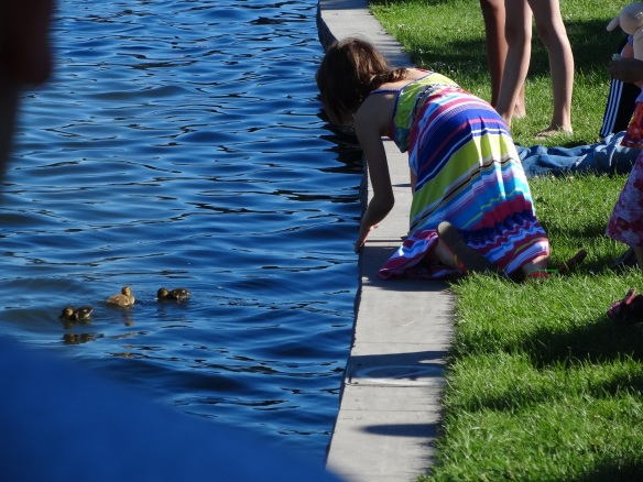 Emilie Feeding Duck Chicks
